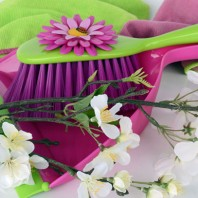 Spring touch-up tips